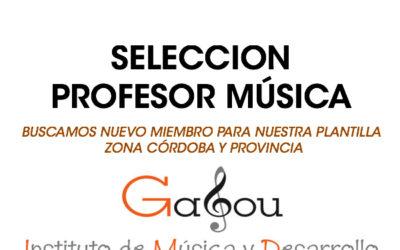 SELECCIÓN PROFESOR:  Instituto Gabou Córdoba
